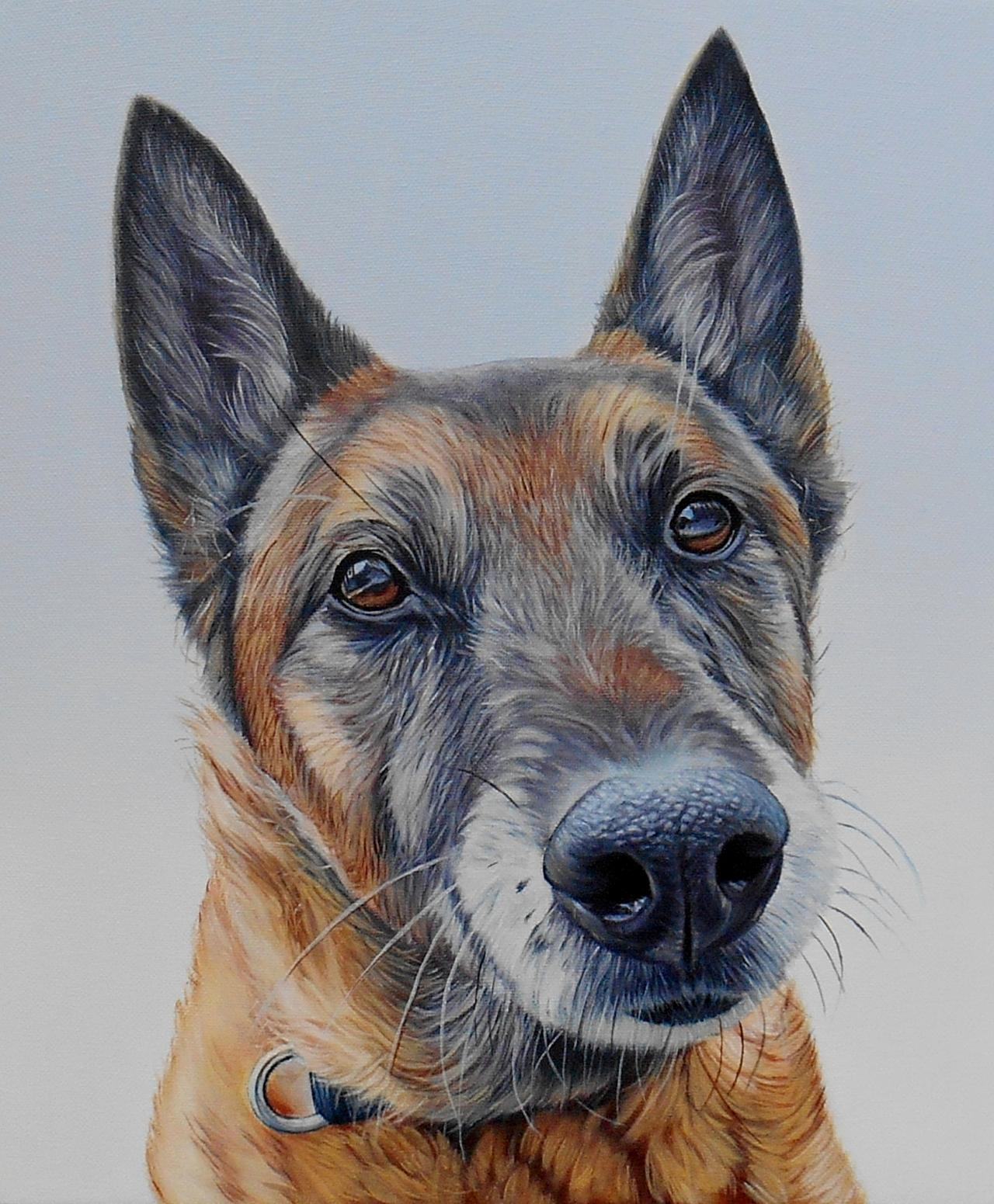 James Ruby Works Dog Portrait Gallerythis Page Contains